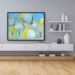 Framed 36 x 48 - Butterfly fishes