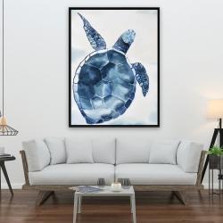 Framed 36 x 48 - Blue turtle