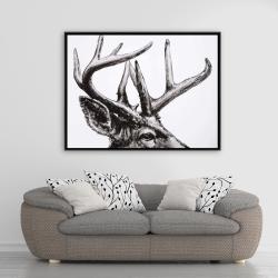 Framed 36 x 48 - Roe deer plume