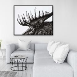 Framed 36 x 48 - Moose plume