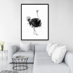 Framed 36 x 48 - Proud ostrich
