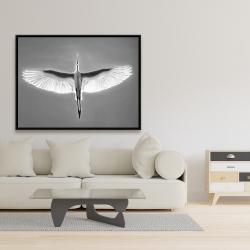Framed 36 x 48 - Great blue heron in flight