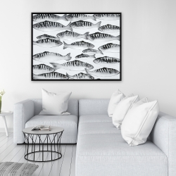 Framed 36 x 48 - Gray shoal of fish