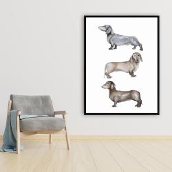 Framed 36 x 48 - Small dachshund dog