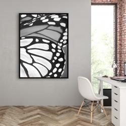Framed 36 x 48 - Butterfly wings closeup