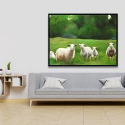 Framed 36 x 48 - Fields of sheep