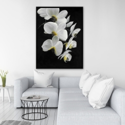 Framed 36 x 48 - Beautiful orchids