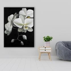 Framed 36 x 48 - White orchids