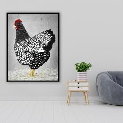 Framed 36 x 48 - Black and white wyandotte hen