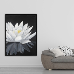 Framed 36 x 48 - Lotus flower with reflection