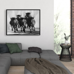 Framed 36 x 48 - Group of bulls at galops