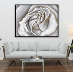 Framed 36 x 48 - White rose delicate