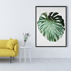 Framed 36 x 48 - Monstera leaf