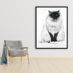 Framed 36 x 48 - Blue eyes fluffy siamese cat