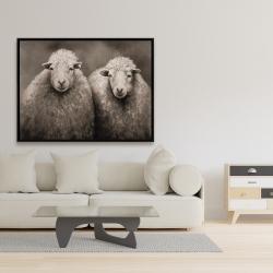 Framed 36 x 48 - Sheep sepia
