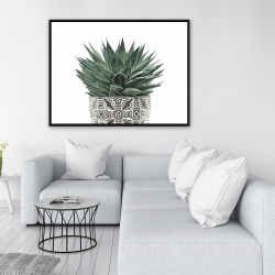 Framed 36 x 48 - Zebra plant succulent