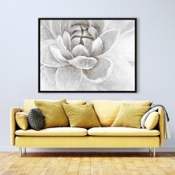 Framed 36 x 48 - Delicate white chrysanthemum