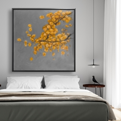 Framed 48 x 48 - Golden wattle plant with pugg ball flowers