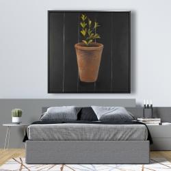 Framed 48 x 48 - Plant of marjolaine