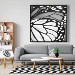 Framed 48 x 48 - Butterfly wings closeup