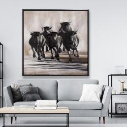 Framed 48 x 48 - Group of running bulls