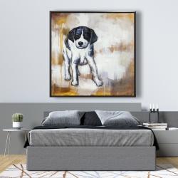 Framed 48 x 48 - Curious puppy dog