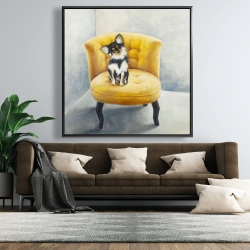 Framed 48 x 48 - Long-haired chihuahua on a yellow armchair