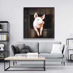 Framed 48 x 48 - Smiling pig