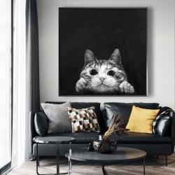 Framed 48 x 48 - Curious cat