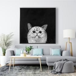 Framed 48 x 48 - Watching cat