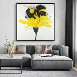 Framed 48 x 48 - Bumblebee on a dandelion