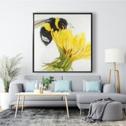Framed 48 x 48 - Little bumblebee on a dandelion