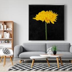 Framed 48 x 48 - Chrysanthemum