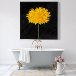 Framed 48 x 48 - Yellow chrysanthemum