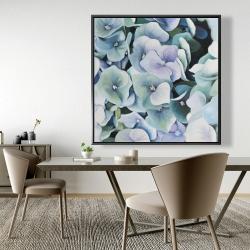 Framed 48 x 48 - Hydrangea plant