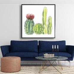 Framed 48 x 48 - Four little cactus