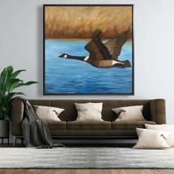 Framed 48 x 48 - Canada goose