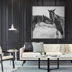 Framed 48 x 48 - Horses lover