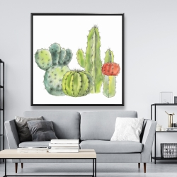 Framed 48 x 48 - Gathering of small cactus