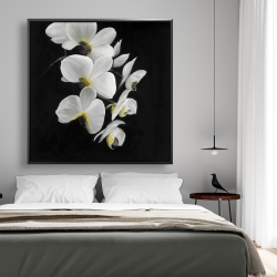 Framed 48 x 48 - Beautiful orchids