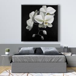Framed 48 x 48 - White orchids