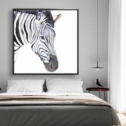 Framed 48 x 48 - Zebra