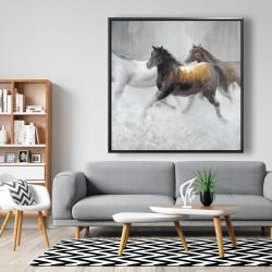 Framed 48 x 48 - Herd of wild horses