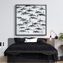 Framed 48 x 48 - Gray school of fish