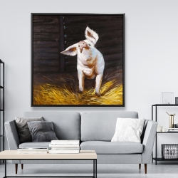 Framed 48 x 48 - Happy pig