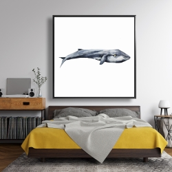 Framed 48 x 48 - Watercolor whale