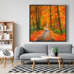 Framed 48 x 48 - Autumn trail