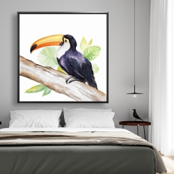 Framed 48 x 48 - Toucan perched