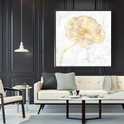 Framed 48 x 48 - Golden poppy flower