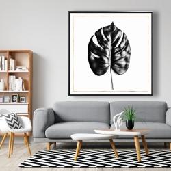 Framed 48 x 48 - Split leaf philodendron with rose line